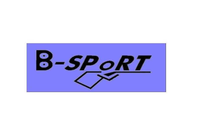 logo_bindrich-sport